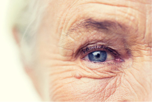 senior in home care toronto